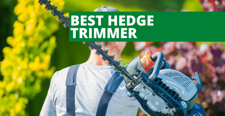 Best Hedge Trimmer (2020 Reviews Updated)