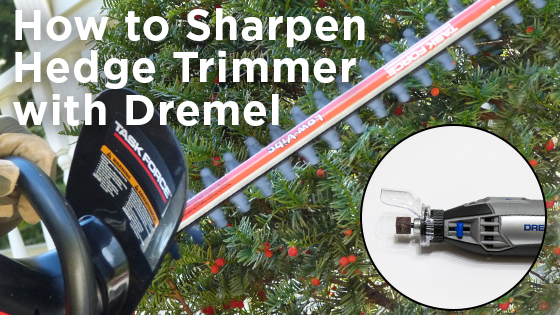 SHARP HEDGE TRIMMER