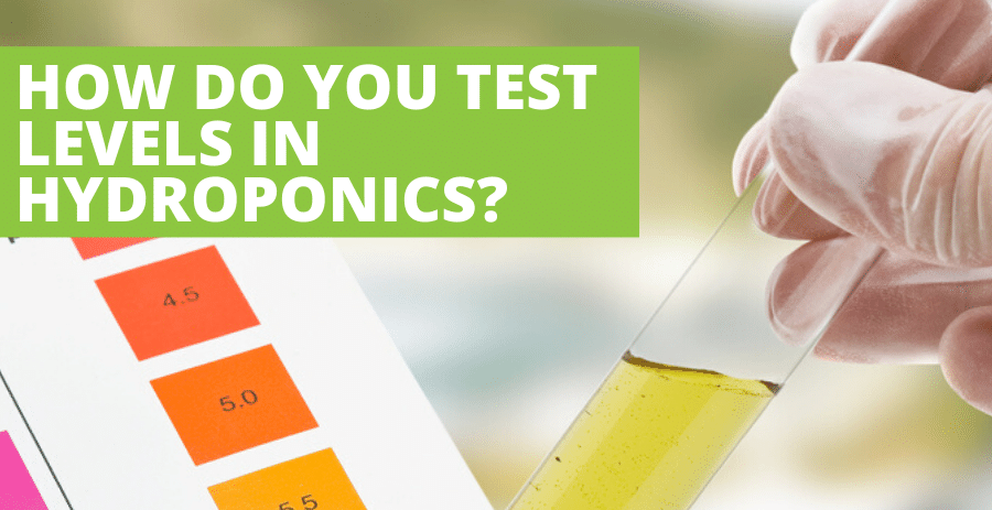 How do you test pH levels in hydroponics?