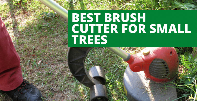 Top 4 Best Brush Cutter For Small Trees (2021 Updated Review)