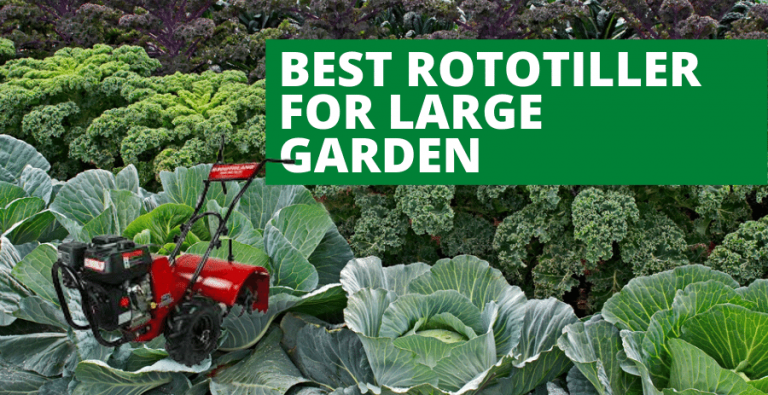 Top 4 Best Rototiller for Large Garden (2020 Updated Review)