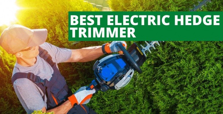 Best Electric Hedge Trimmer (2020 Reviews Updated)