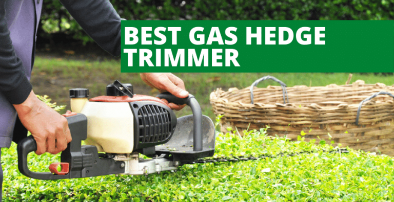 Best Gas Hedge Trimmer (2020 Reviews Updated)