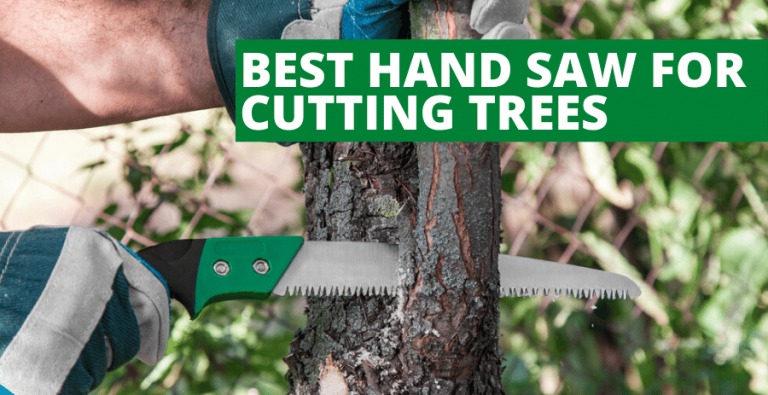 Best Hand Saw For Cutting Trees (2020 Reviews Updated)