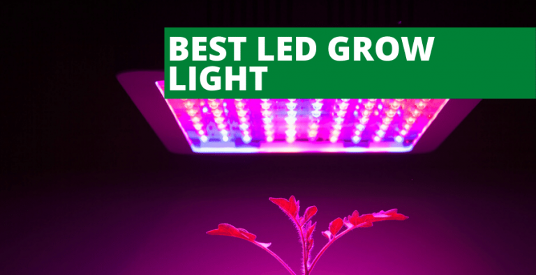 Top 5 Best LED Grow Light (2021 Reviews Updated)