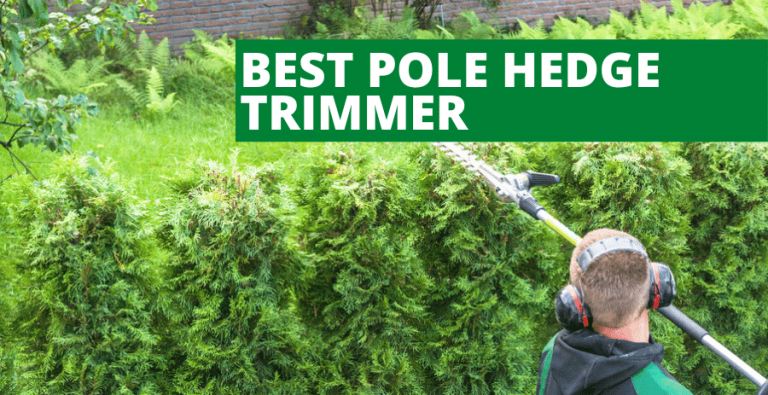 Best Pole Hedge Trimmer (2020 Reviews Updated)