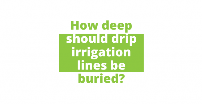 How deep should drip irrigation lines be buried?