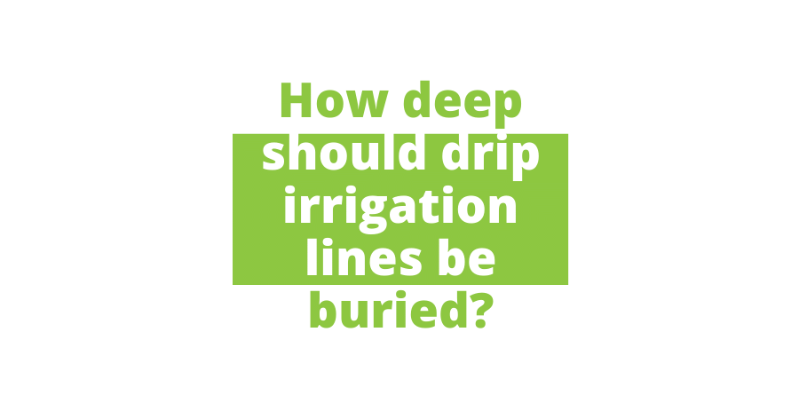 how deep should drip irrigation lines be buried Featured Image